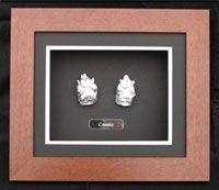 Pets At Peace - Pet Cremation Service - Paw Memorial Frames